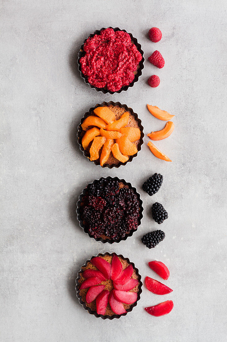 Top view of palatable pies with various ripe fruits and berries arranged in line on table