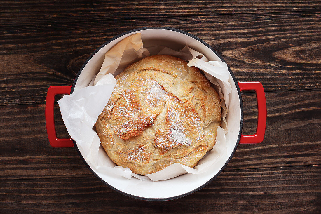 Homemade round Artisan bread freshly baked in an enamel cast iron Dutch oven.