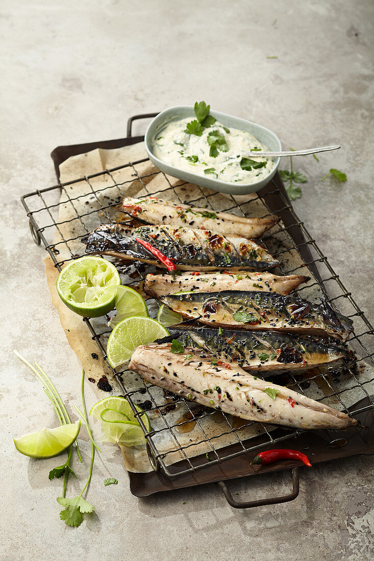 Oven roast mackerel with chili, ginger and coriander sauce