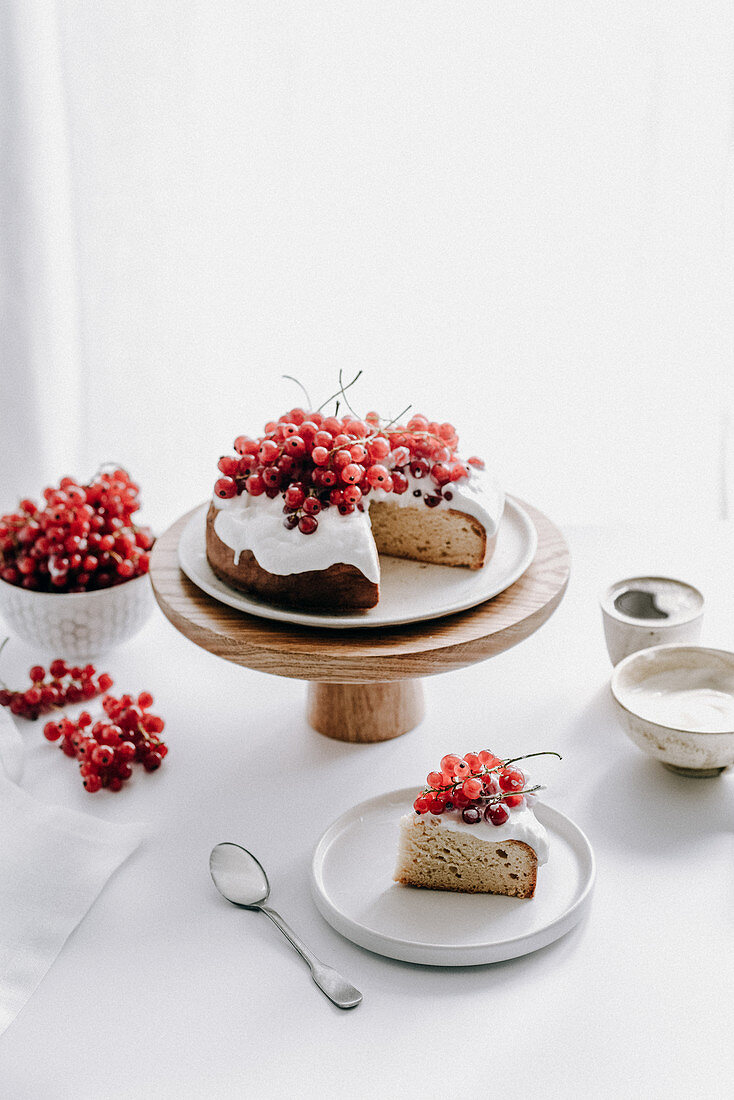 Sponge cake with ricotta cream and red currants