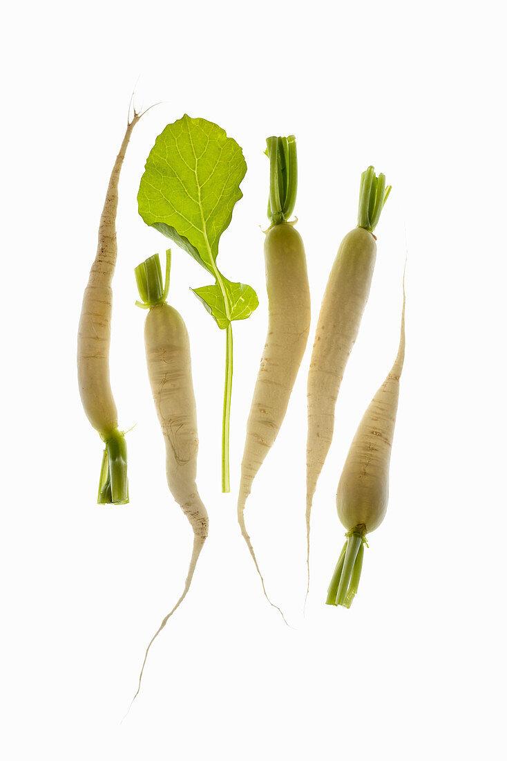 Icicles (turnips)