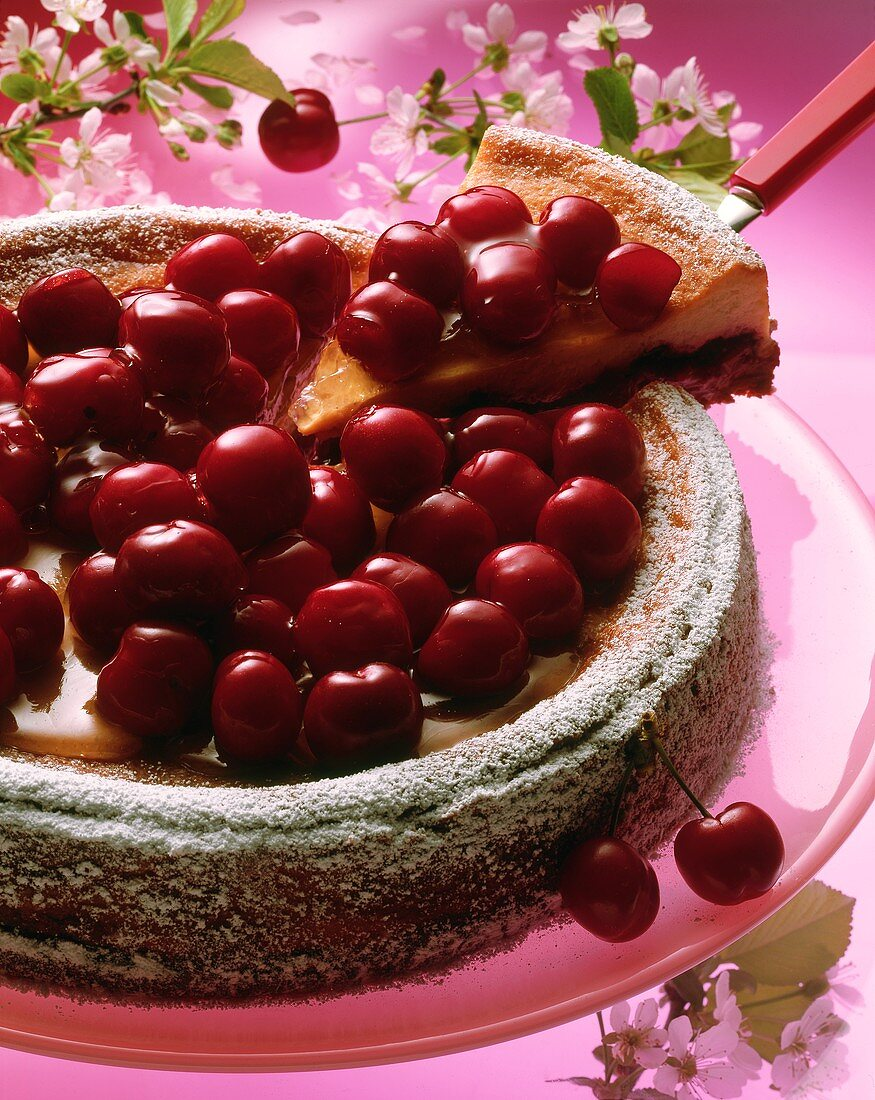 Cherry cheesecake, pieces cut, one piece on cake slice