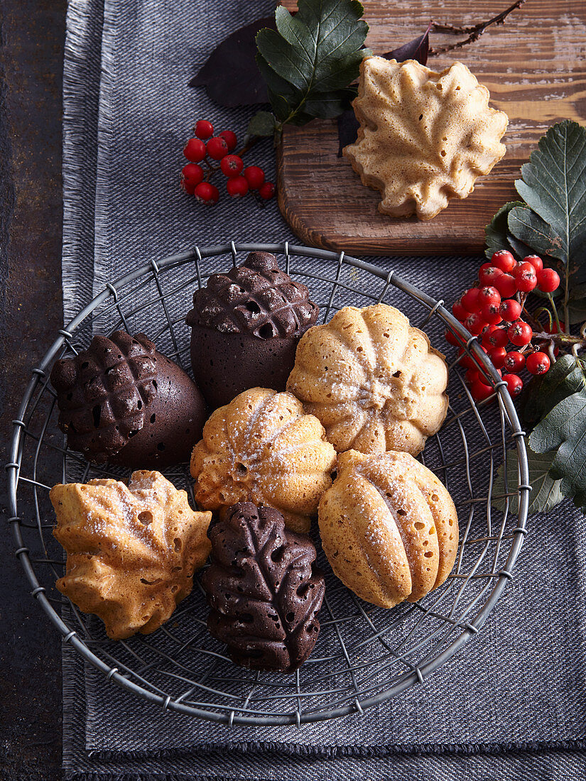 Nut and cocoa Christmas cookies