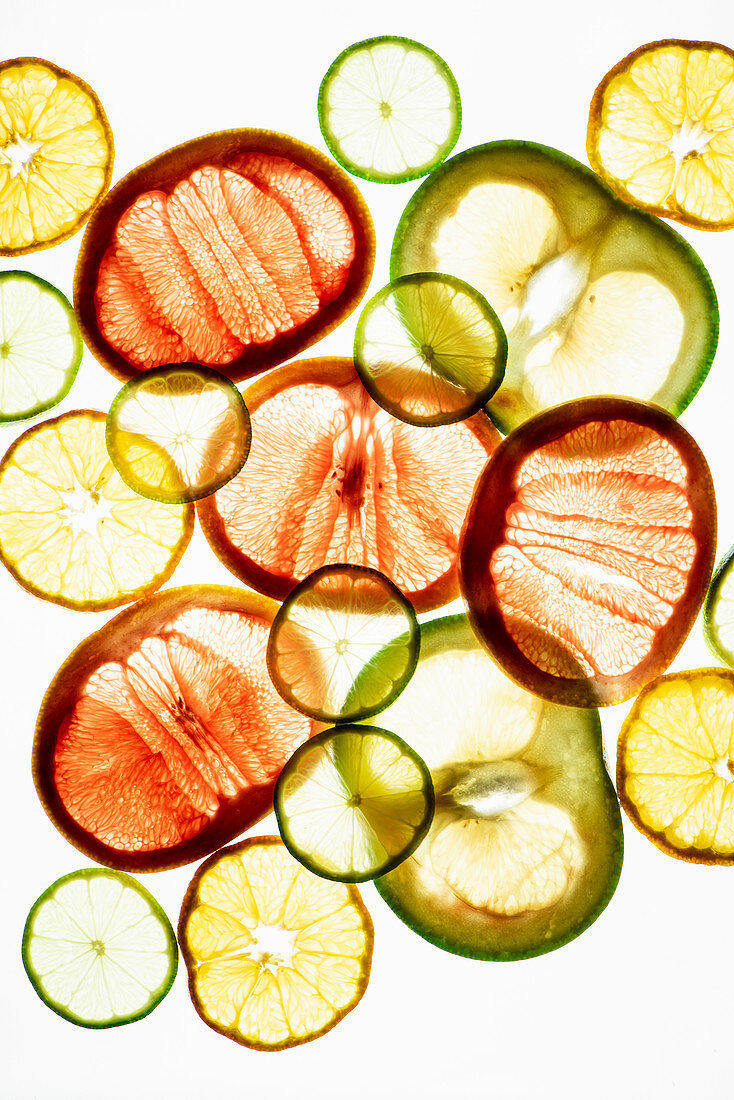 Transculent citrus fruit slices