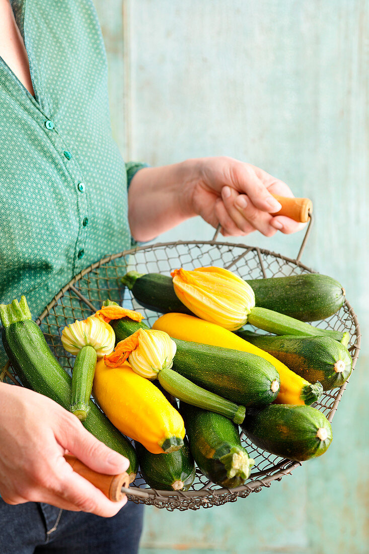 Yellow and green zucchini with zucchini flowers