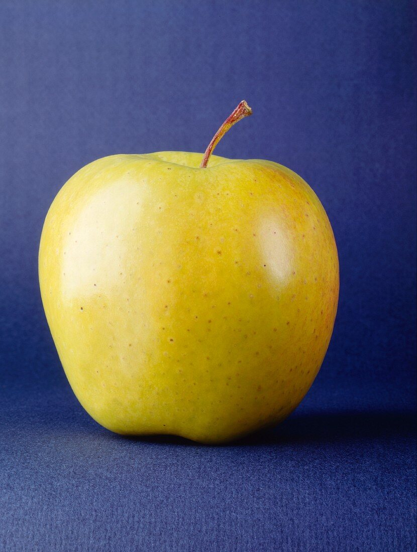 Golden Delicious Apple with Blue Background
