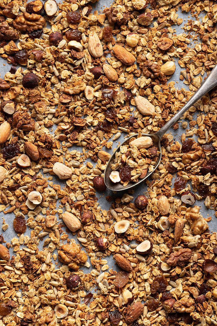 Homemade apple granola with almonds, hazelnuts and walnuts