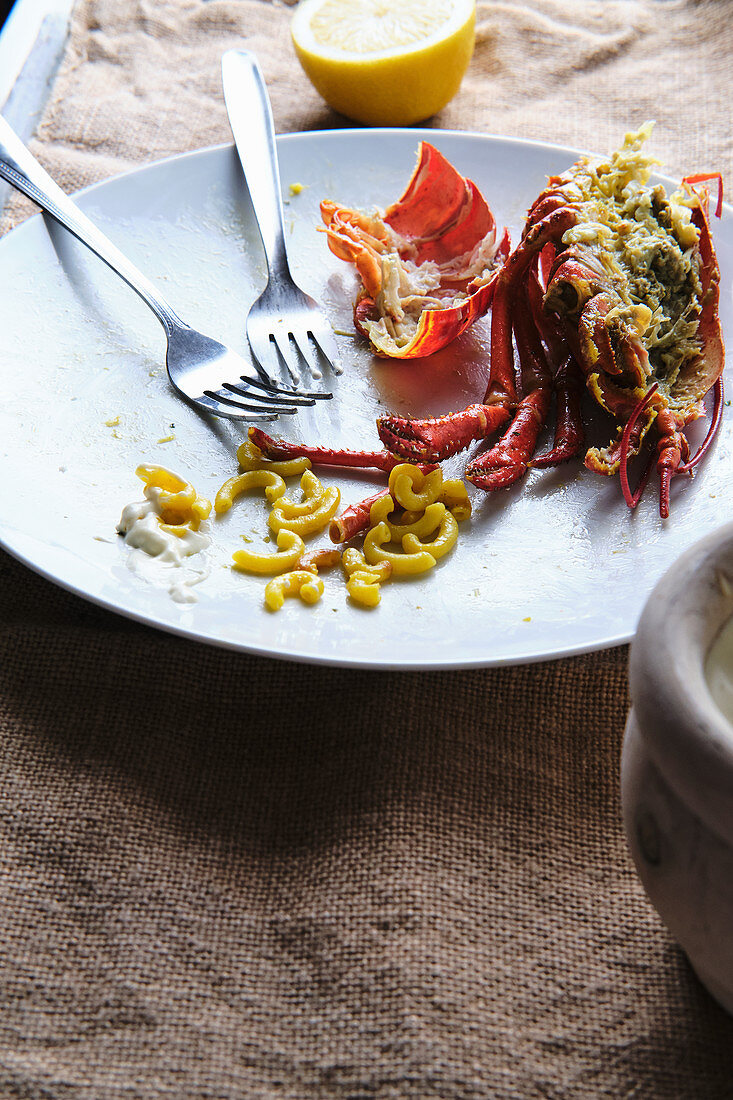 Remains of finished tasty lobster served with pasta and sour cream