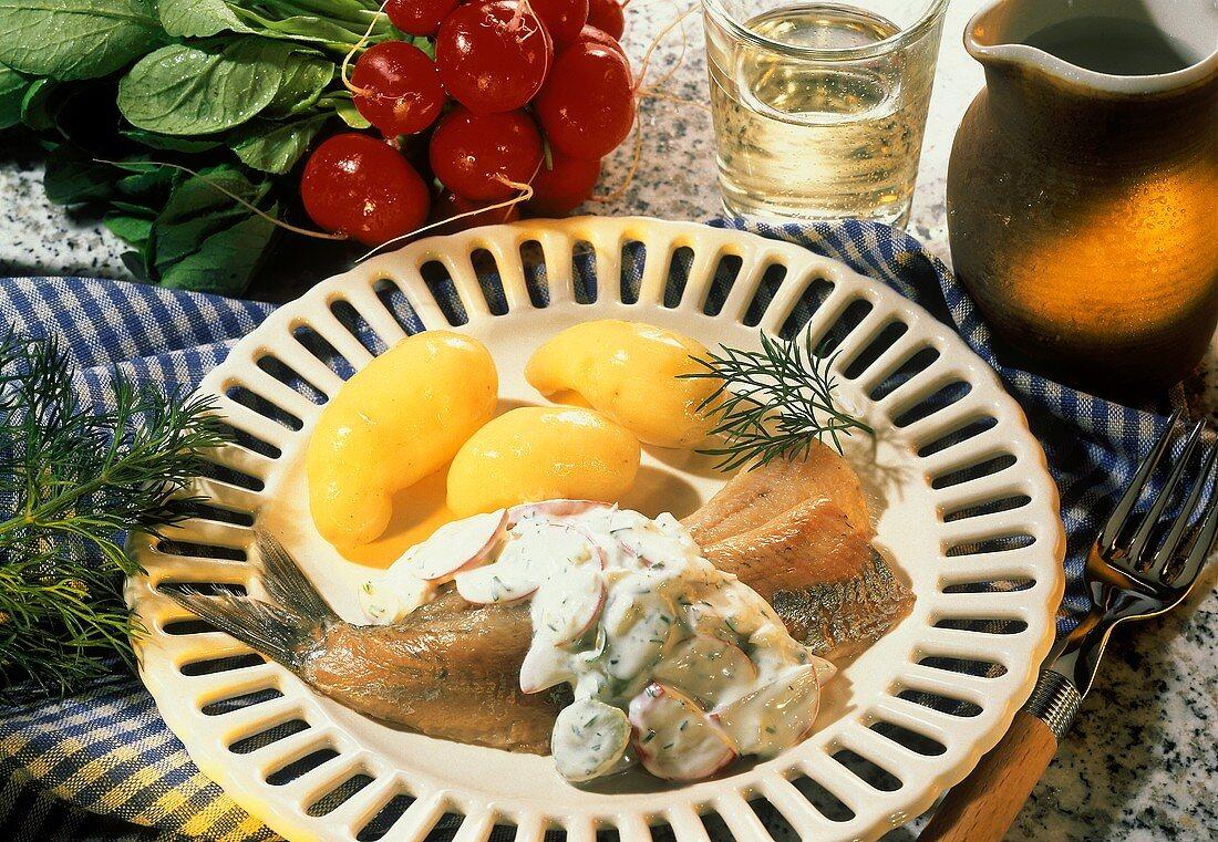 Maties, herb cream sauce with radishes &  potatoes