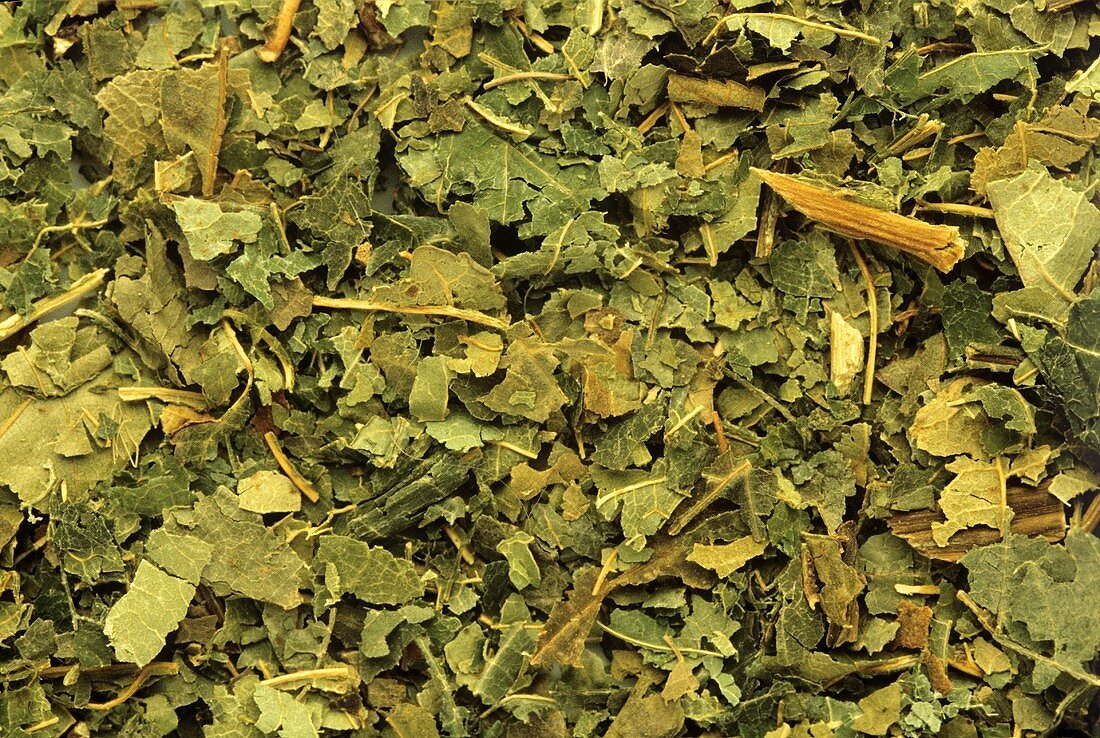 Dried horse chestnut leaves (Aesculus hippocastanum)