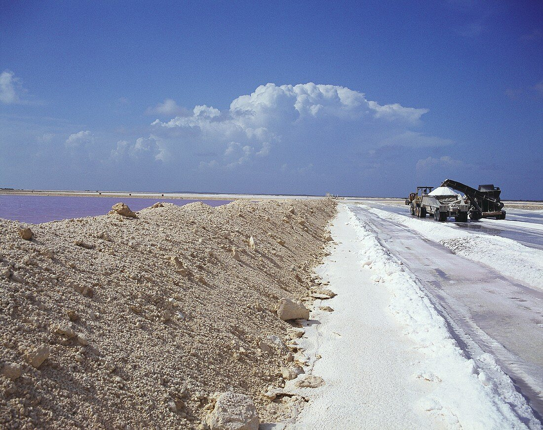 Salt-works in the Bahamas: machine loading salt on to lorry