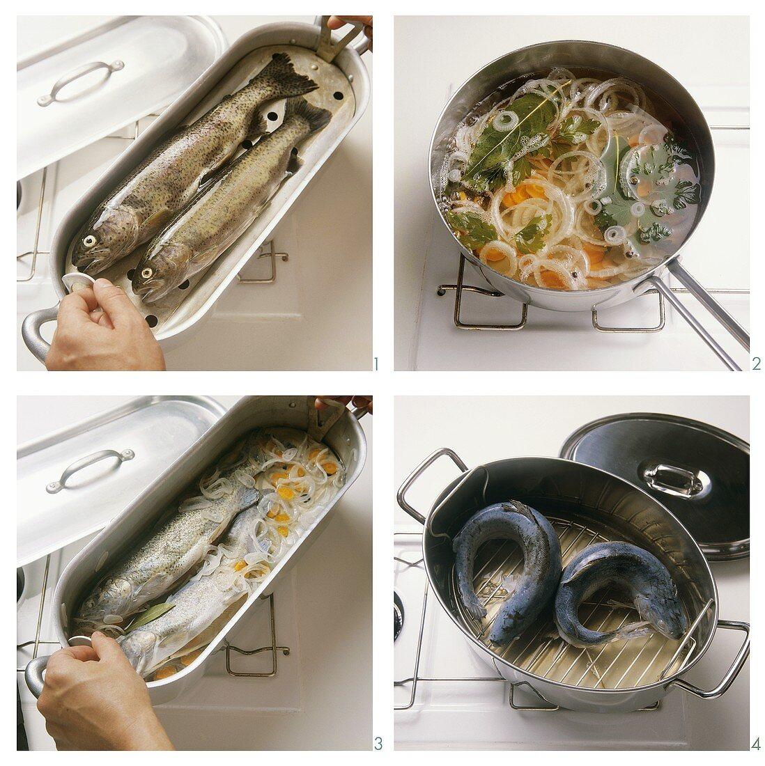 Preparing trout for cooking blue (au bleu)