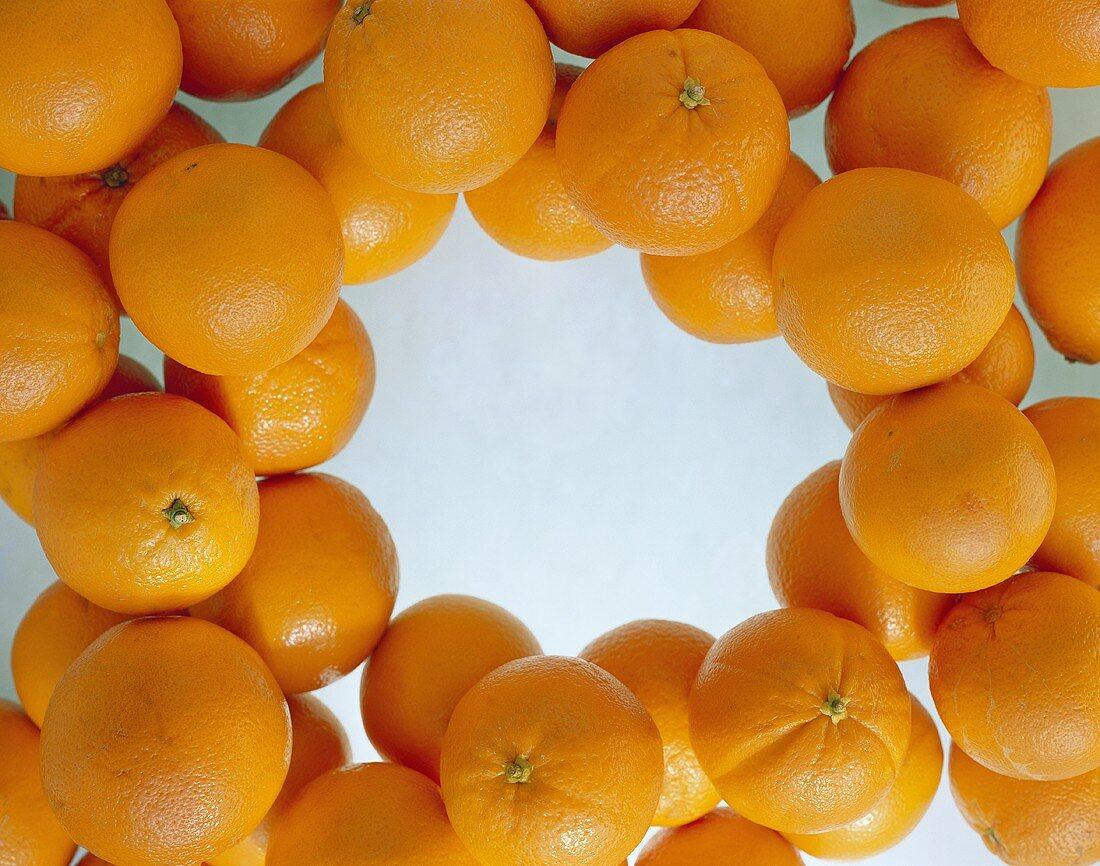 Oranges, around the edge of the picture