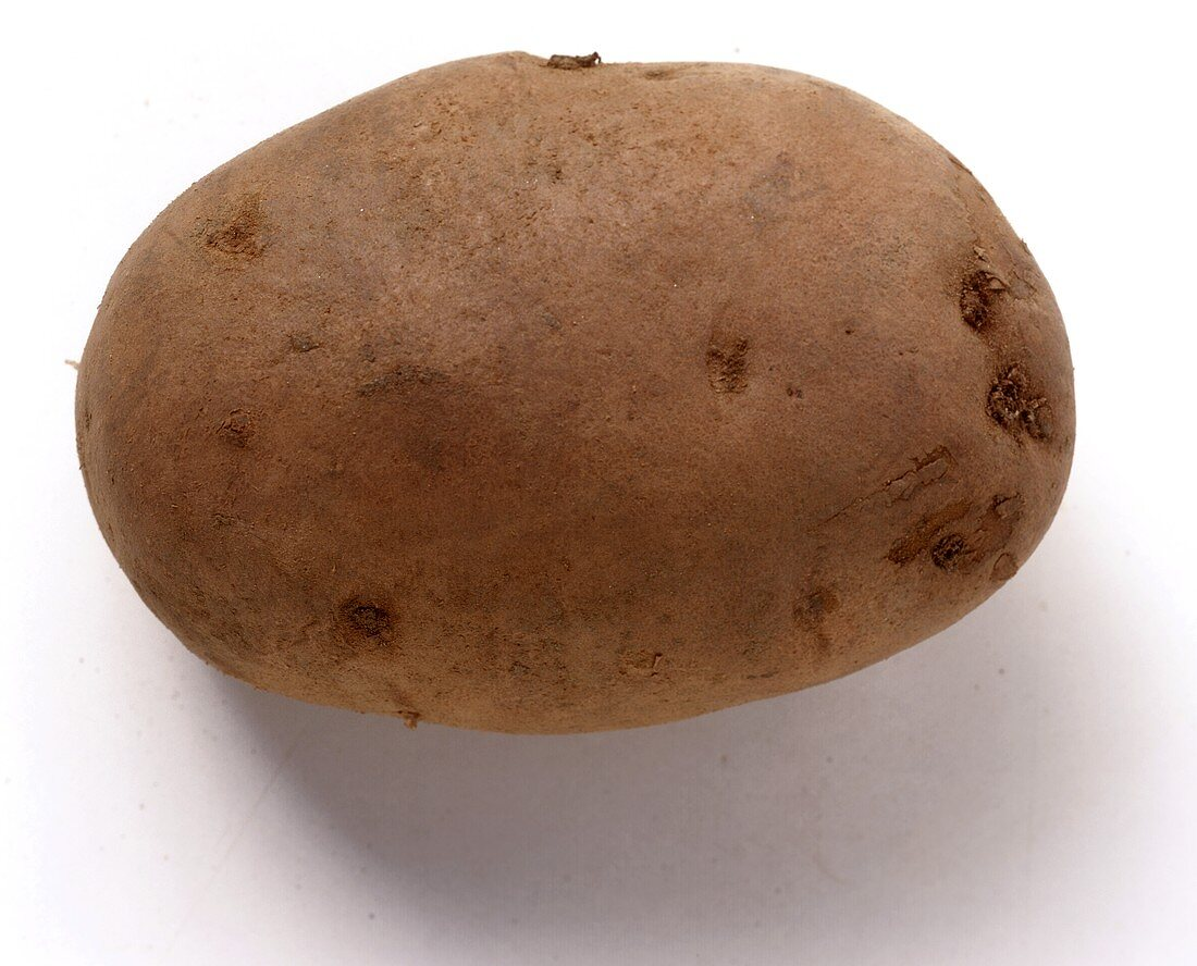Potato (Agria variety) from Germany