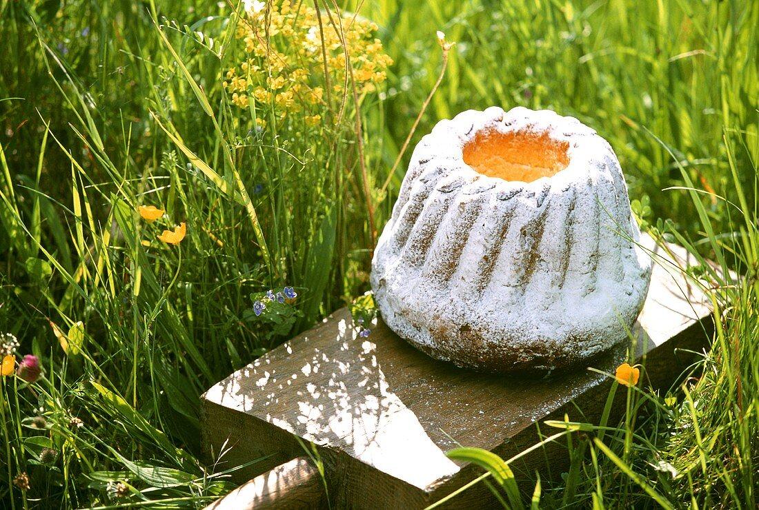 Alsatian gugelhupf on kitchen board in grass