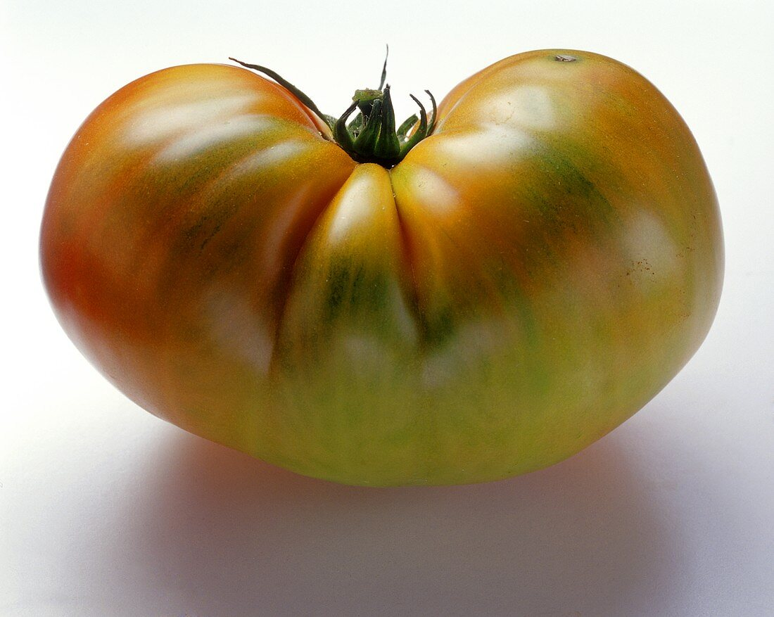 One Large Partly Ripe Beefsteak Tomato