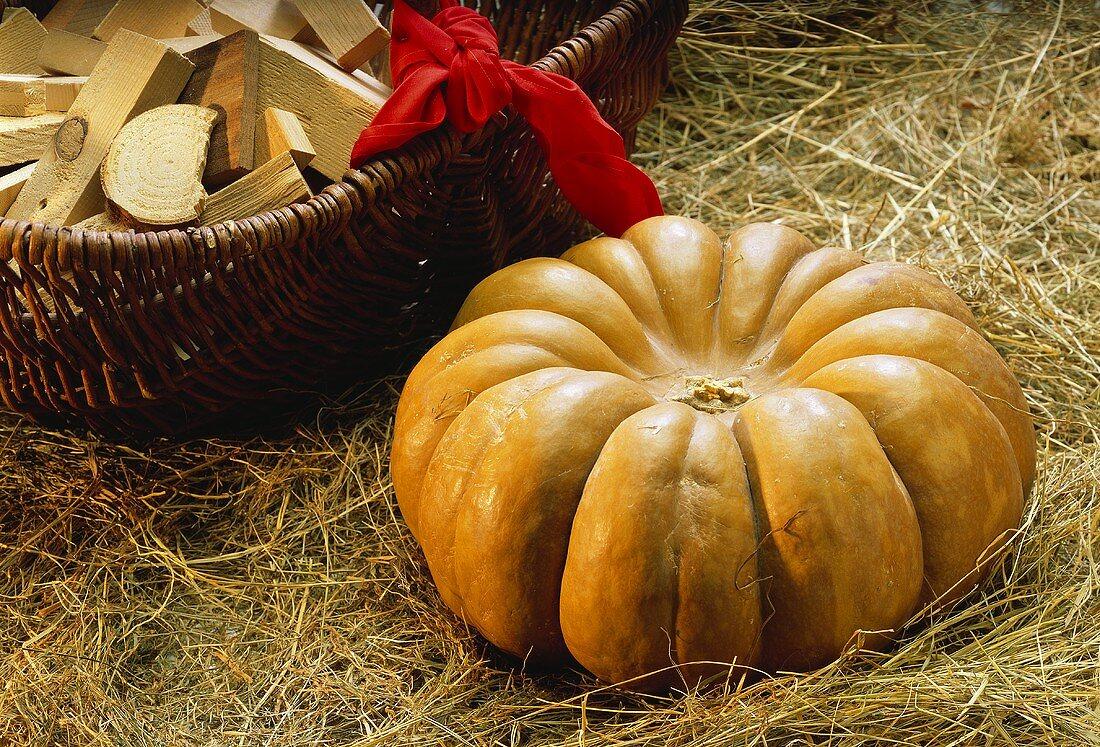 A Japanese pumpkin lying in hay; a basket behind
