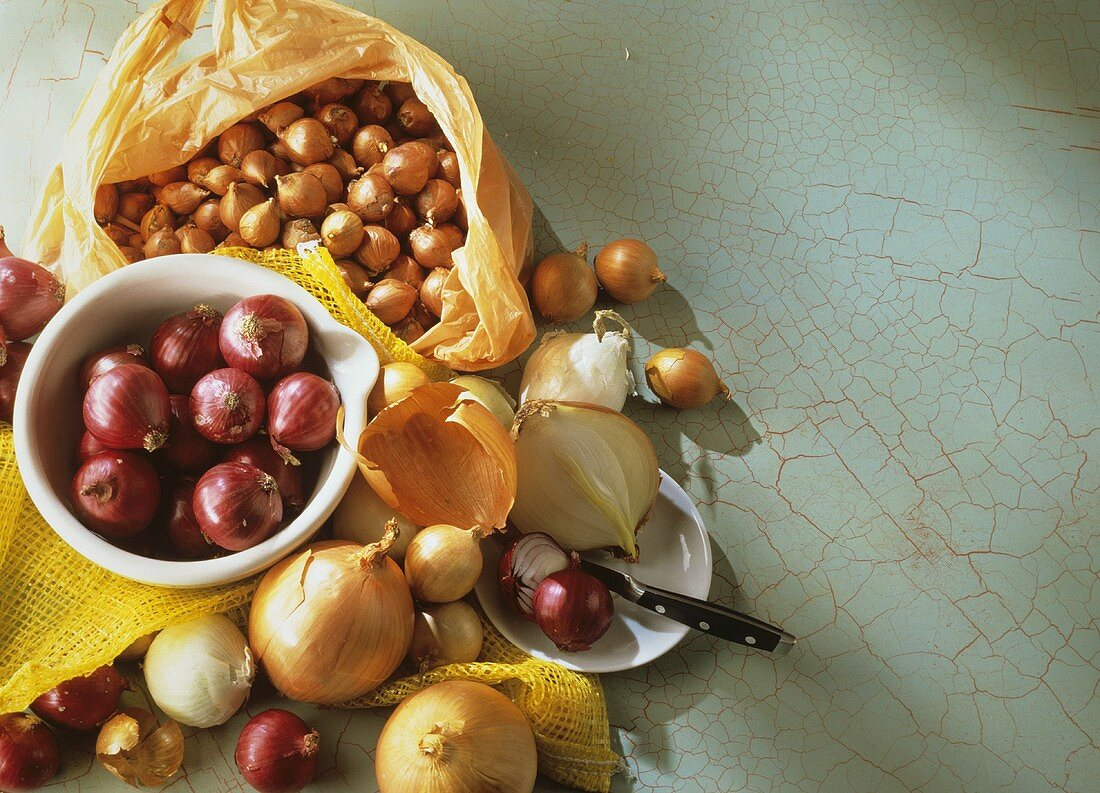 Still life with several types of onions