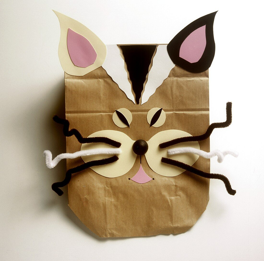 Paper animal masks of children's party: cat