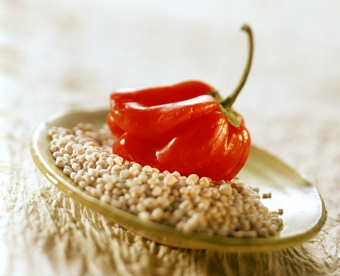 Mini-peppers and pearl barley on plate