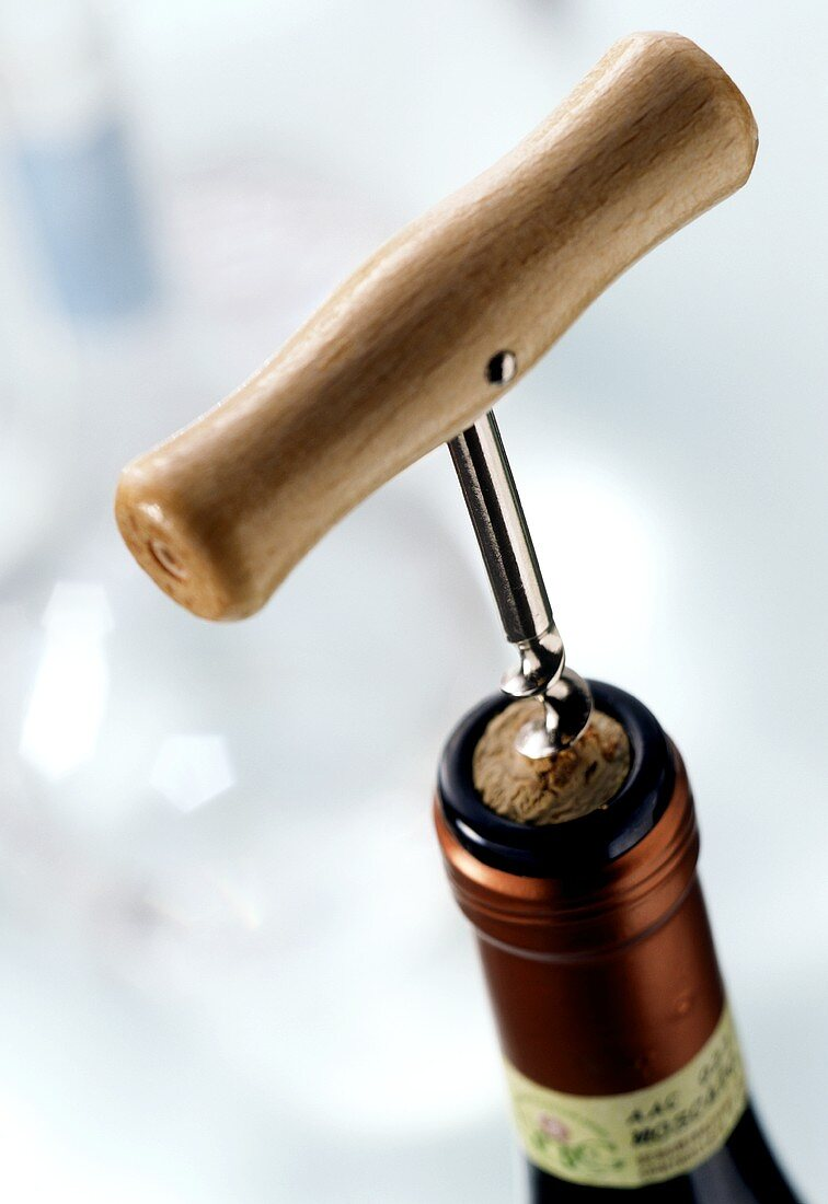 Corkscrew with wooden handle in bottle neck