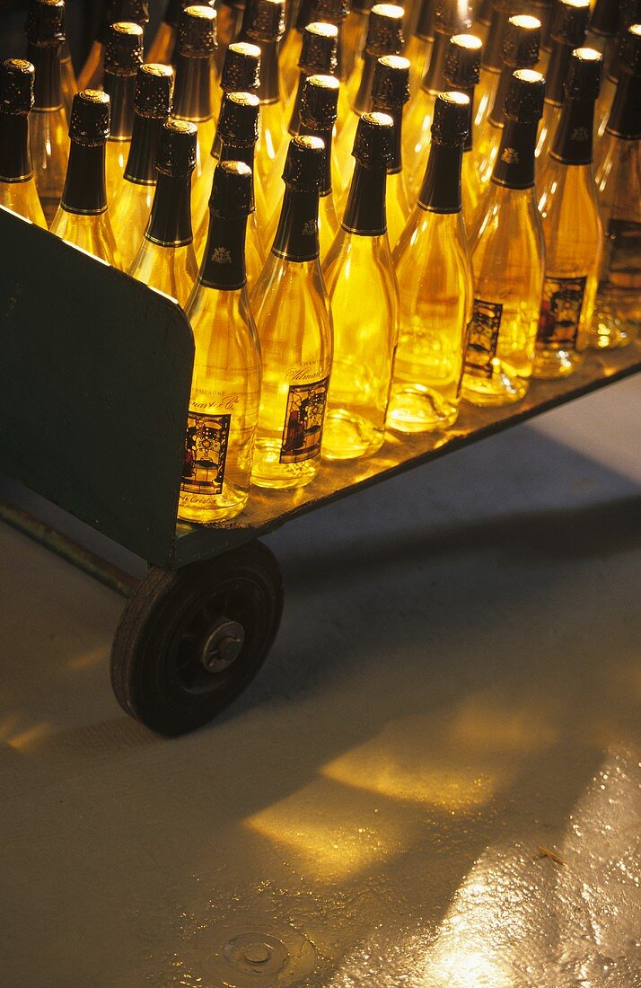Transporting Vilmart champagne bottles by lorry, Champagne