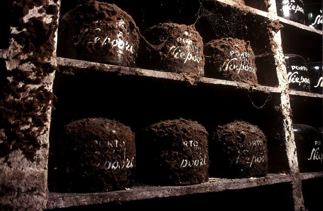 Old port wines in wine cellar, Vila Nova de Gaia, Portugal