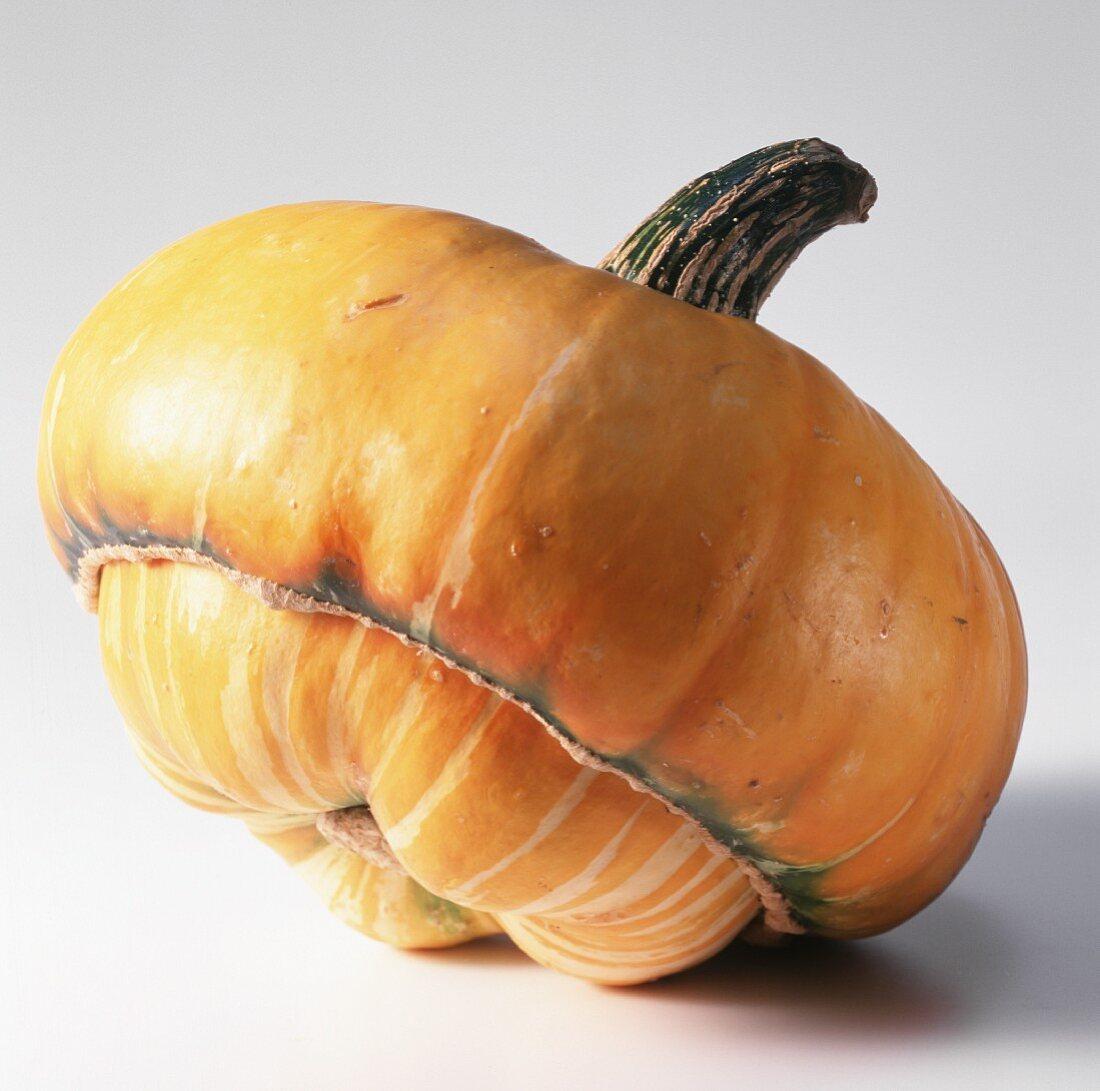 A Turk's turban pumpkin