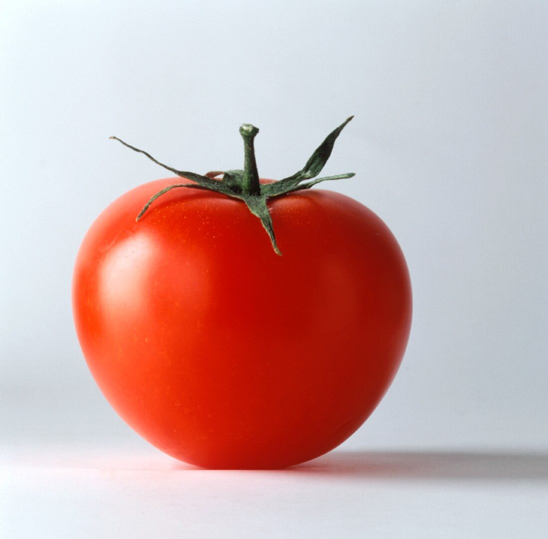 One Red Tomato