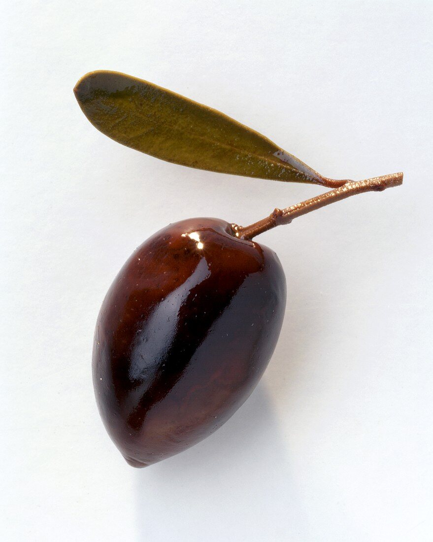 Olive with Leaf