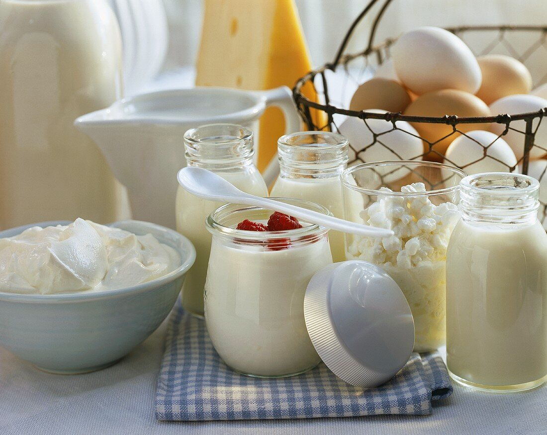 Still life with yoghurt and cream cheese