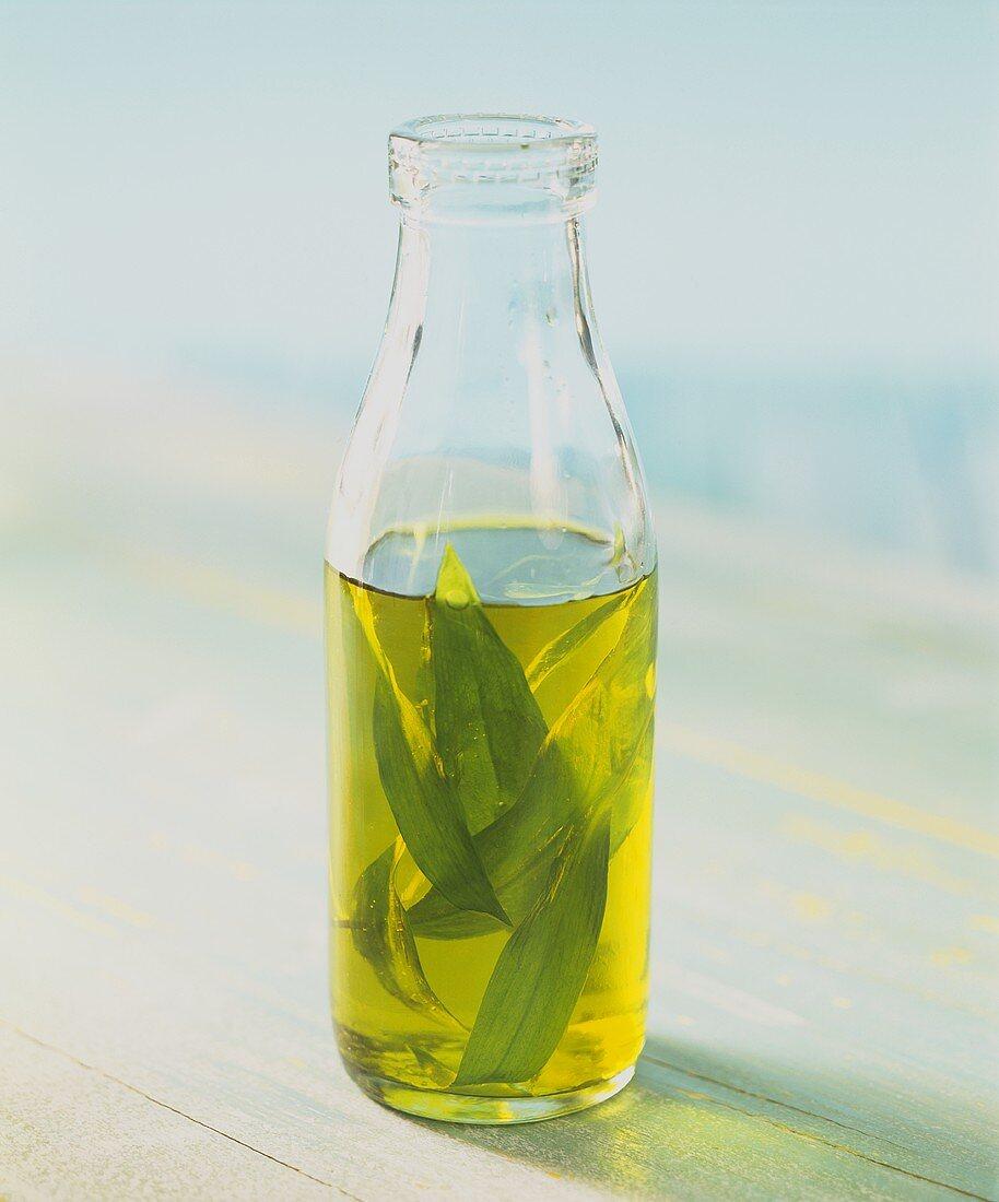 Home-made ramsons (wild garlic) oil
