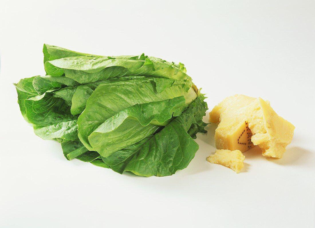Romaine lettuce with parmesan