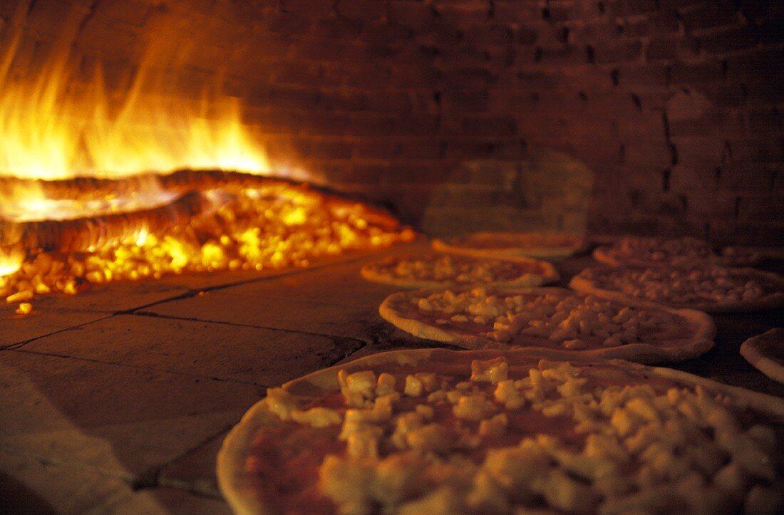 Pizzen im Pizzaofen mit Holzfeuer – Bilder kaufen – 165767 ❘ StockFood