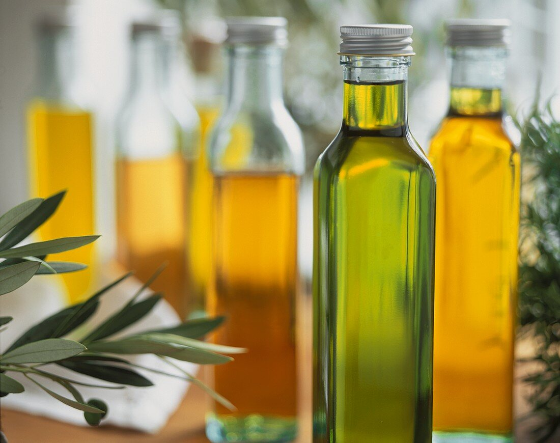Olive, rapeseed, avocado, almond and hazelnut oils