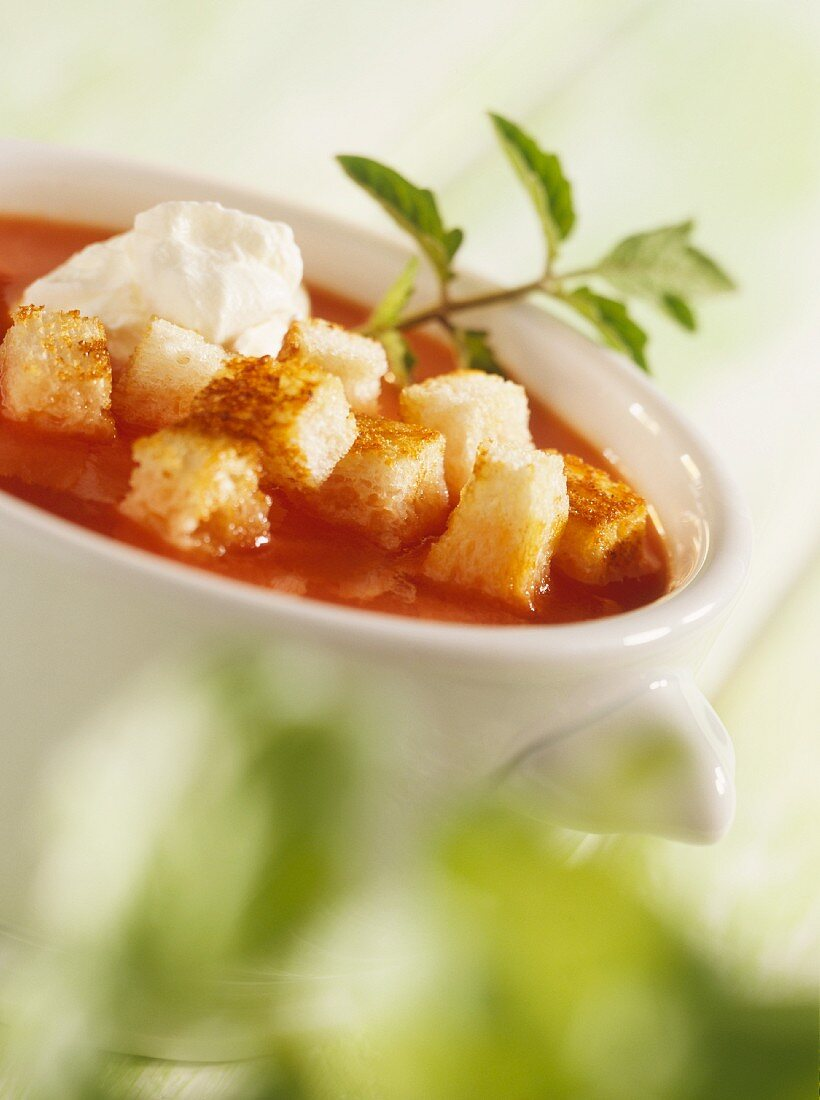 Quick tomato soup with croutons and cream