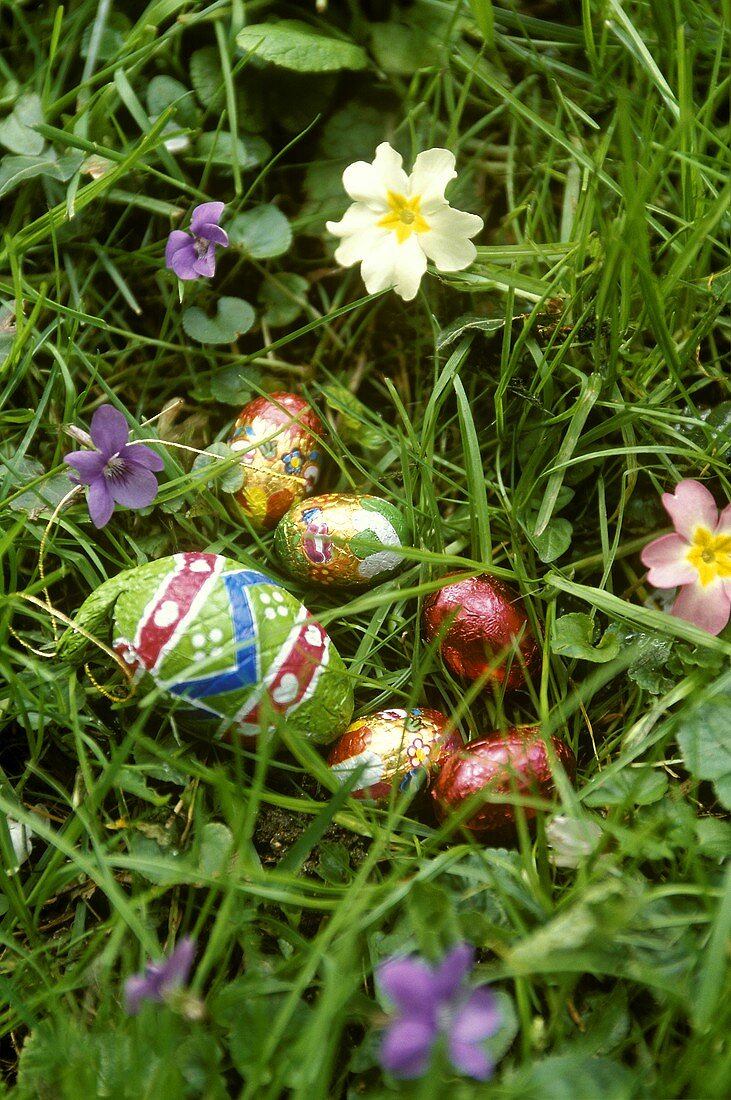 Chocolate eggs in grass