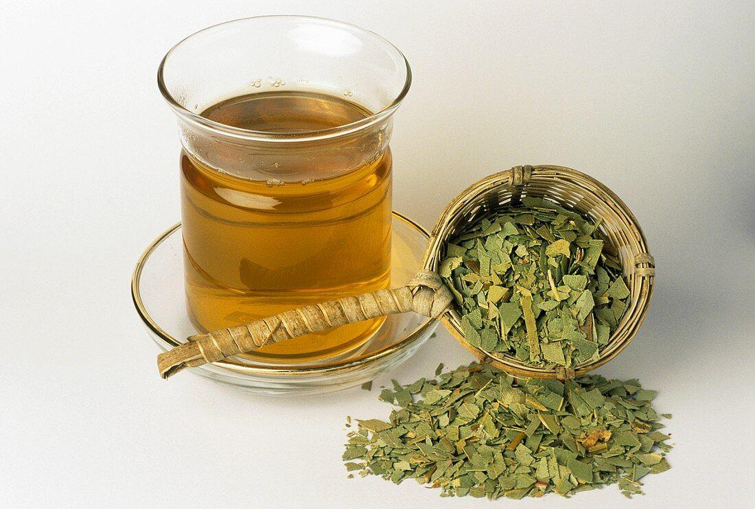 Eucalyptus tea and dried leaves (Eucalyptus globulus)