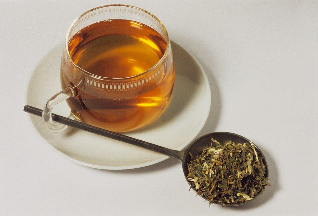 Goat's rue tea and dried herb (Galegae herba)
