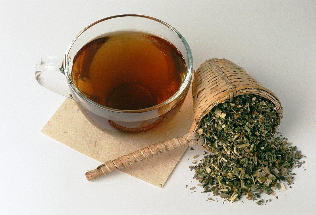 Motherwort tea and dried herb (Leonurus cardiaca)