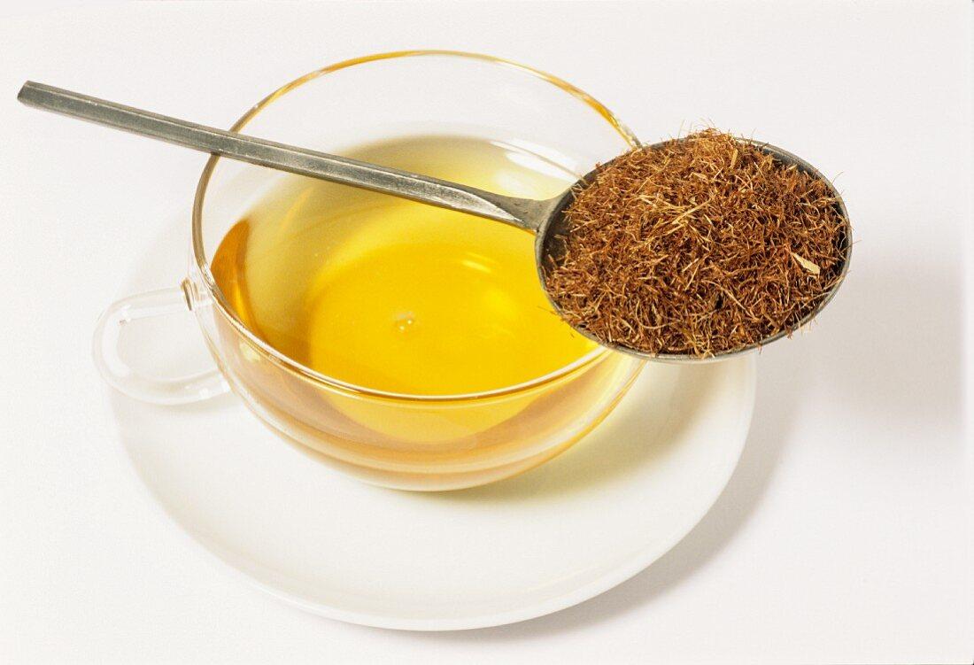 Corn silk tea (Zea mays)