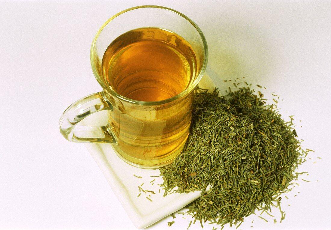 Horsetail tea and dried herb (Equisetum arvense)