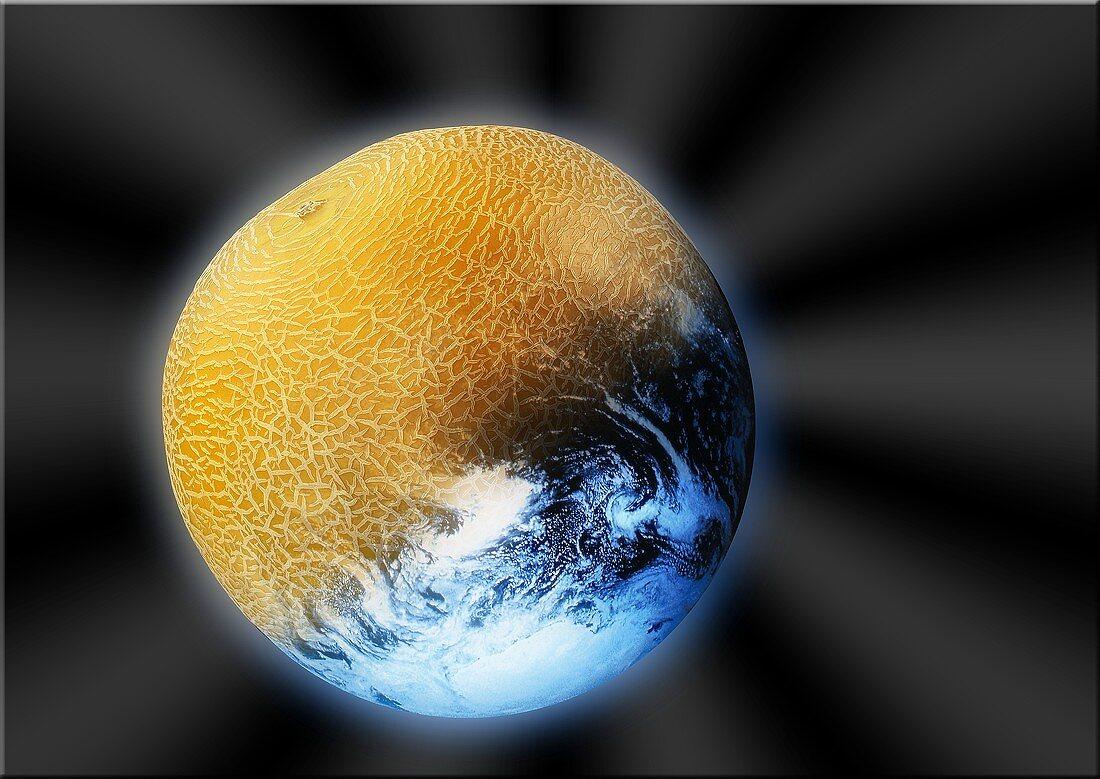 Artistic collage: half galia melon, half globe