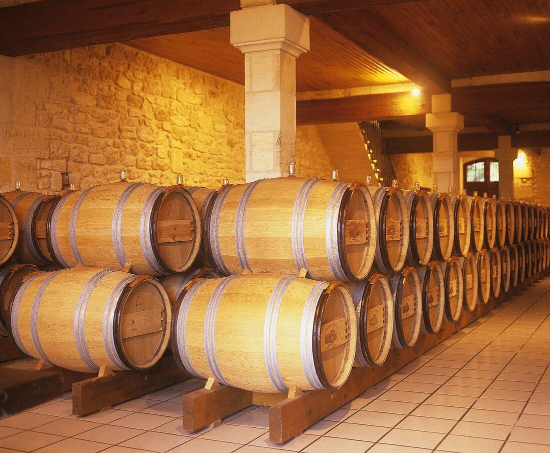 Wine cellar of Chateau du Cauze, St. Emilion, Bordeaux