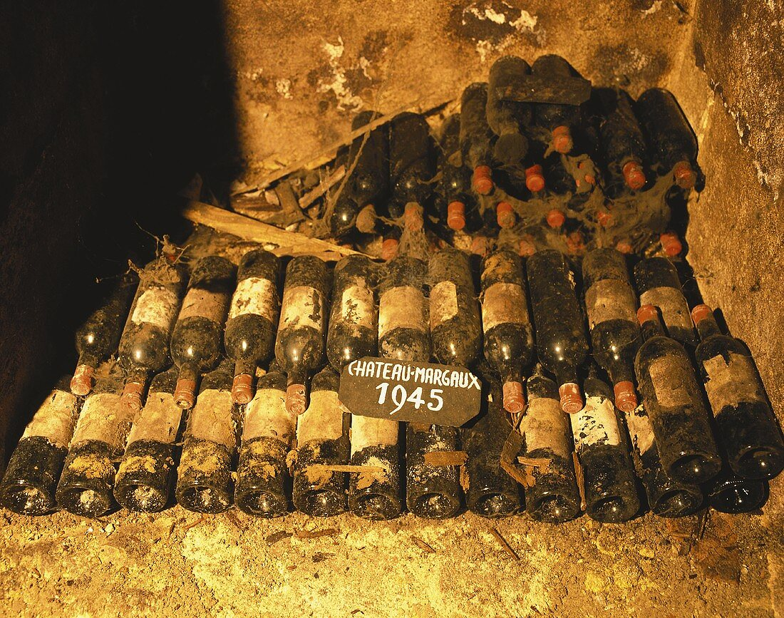 Old Bordeaux bottles (Château Margaux) in wine cellar