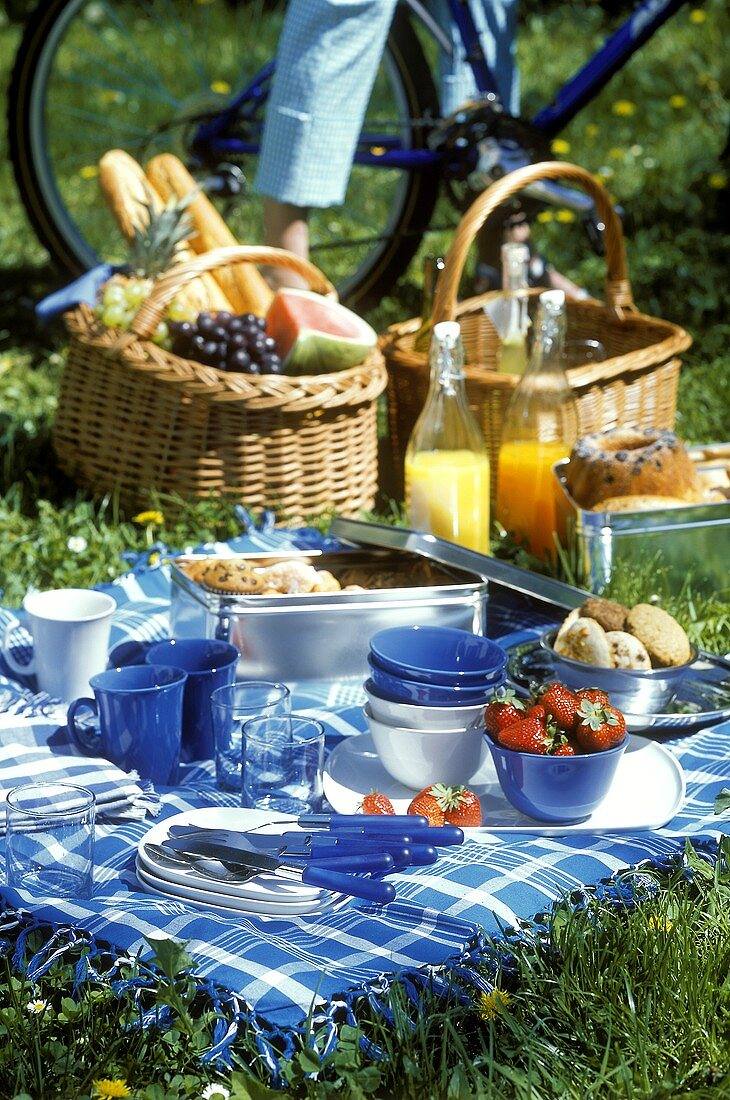Picnic scene with picnic things, berries, cakes, juice etc