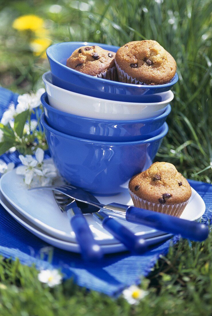 Chocolate chip muffins and picnic things in meadow