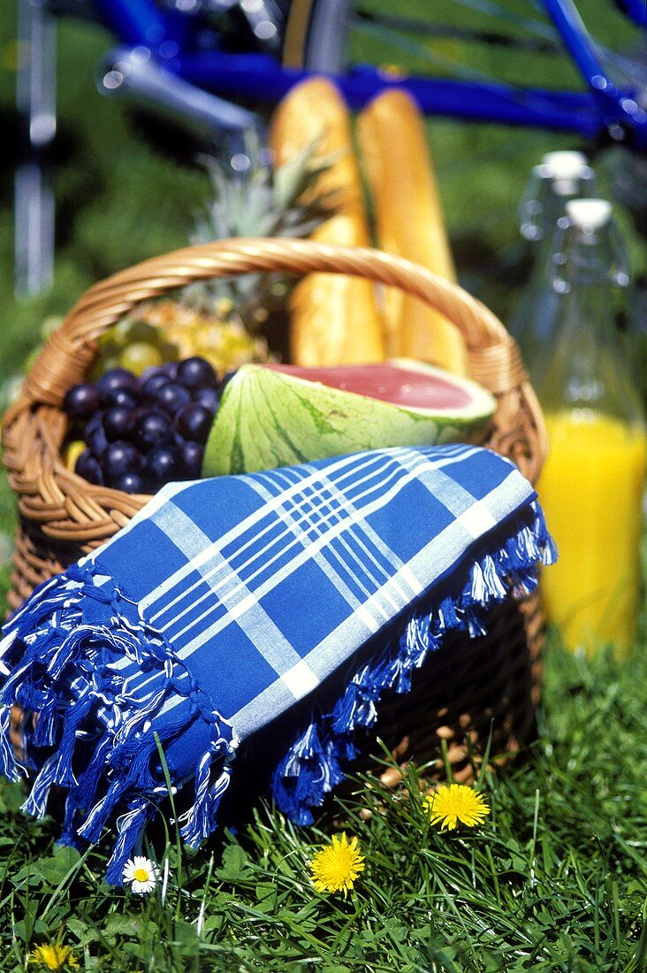 Fruit, baguettes and table cloth in basket on grass