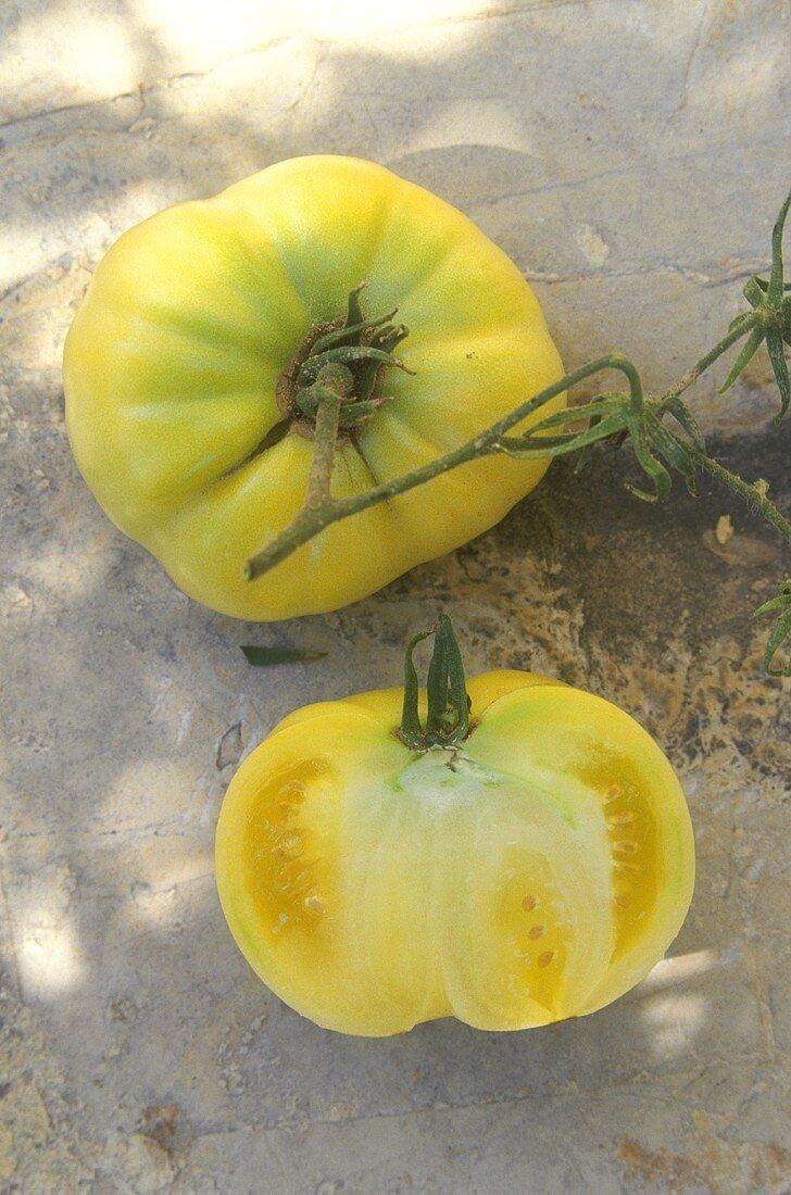 Beige or pale yellow beef tomato, White Wonder