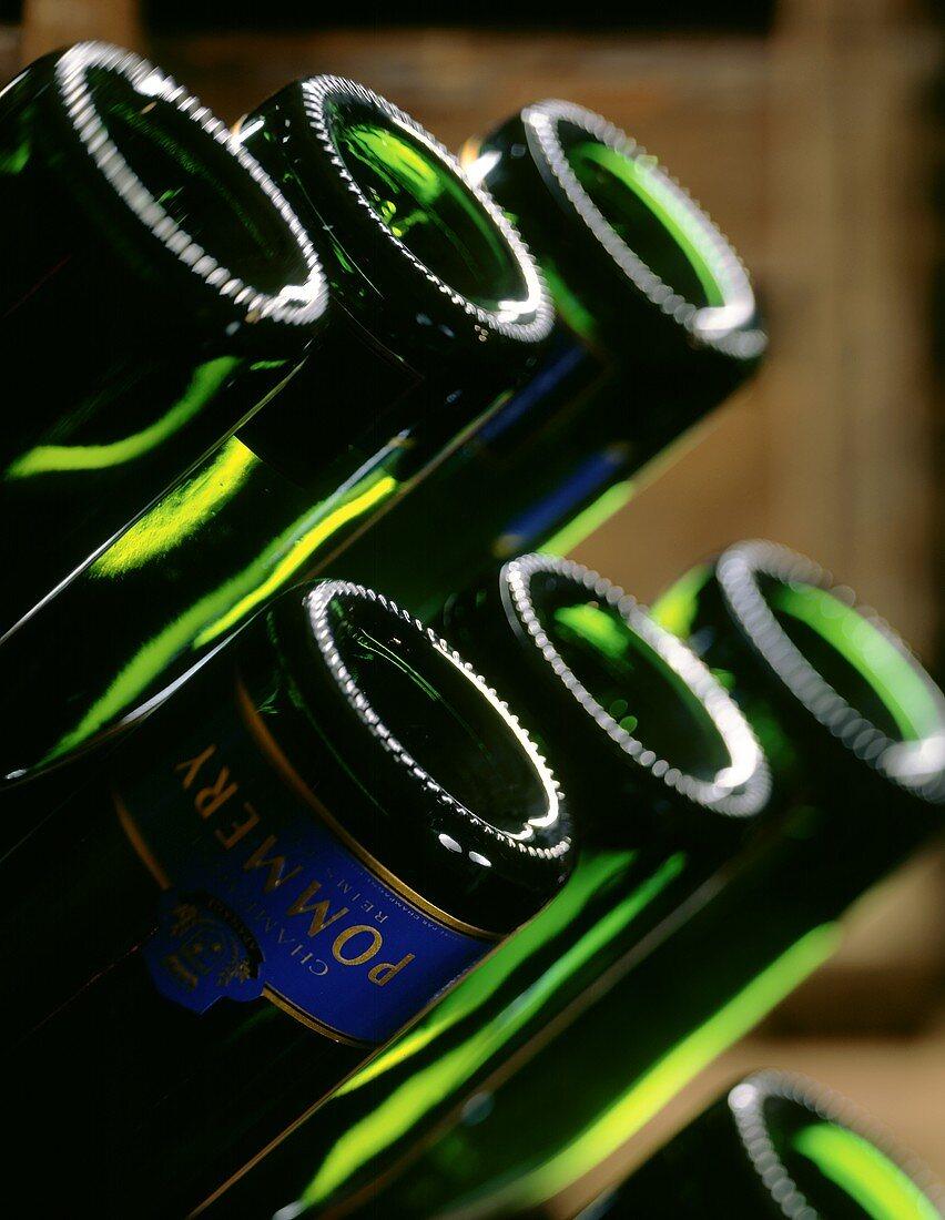 Champagne bottles in pupitre